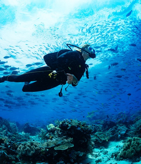 5 Watches you can really dive with