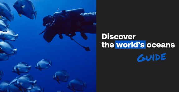 Discover the world's oceans - guide